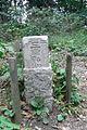 Chichibu,Nagatoro,Saitama - Hodo-san 宝登山三角点 (1804297567).jpg