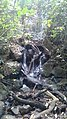 Chutes d'eau à Bamougong - 8.jpg