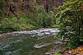 Clackamas Wild and Scenic River (27727577650).jpg