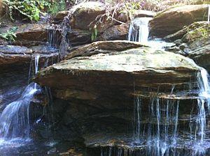 Clemson Experimental Forest - Closeup of Waldrop Stone Falls in the Clemson Experimental Forest '.