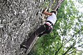 Climbing (4672309439).jpg