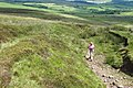 Climbing Dunsop Fell - geograph.org.uk - 1979385.jpg