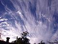 CloudsNov2010-1 (5147391460).jpg