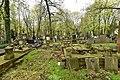Cmentarz Powązkowski w Warszawie 2017e.jpg