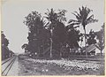 Collectie NMvWereldculturen, RV-A440-dd-116, foto, 'Gezicht op de oostzijde van de kampong Pengok te Yogyakarta', fotograaf onbekend, 1924-1932.jpg