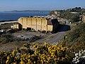 Cornwall Coliseum - geograph.org.uk - 1238029.jpg