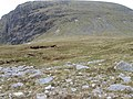 Creagan Meall Horn - geograph.org.uk - 818148.jpg