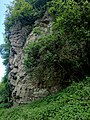 Creswell Gorge, Creswell Craggs, Notts (116).jpg