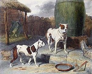 Abraham Cooper - Image: Criband Rosa 1811