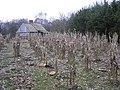 Crop, Ulster American Folkpark - geograph.org.uk - 284157.jpg