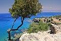 Cyprus, Akamas Peninsula - panoramio.jpg