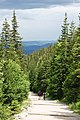 Czarny szlak na Śnieżkę - panoramio.jpg