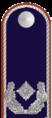 DL271-Major i.G.png