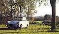 Daf 750 Daffodil (1).jpg