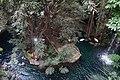 Dallas World Aquarium January 2019 01 (Orinoco Rainforest).jpg