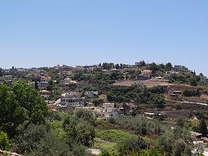 Daliyat al-Karmel - Image: Dalyat al Karmel 1