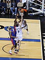 Darius Songaila NBA 11.jpg