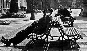 Circadian rhythm - A short nap during the day does not affect circadian rhythms.