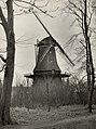 De (graan) molen De Sandhaes met door de storm gehavende wieken (11 jan.). Aangekocht in 1977 van fotograaf C. de Boer. Identificatienummer 54-004463.JPG