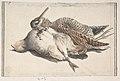 Dead Birds. MET DP809435.jpg