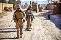 Defense.gov photo essay 111027-M-PE262-005.jpg