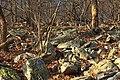 Delps Trail (3) (10791988784).jpg