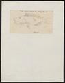 Dentex diplodon - 1825 - Print - Iconographia Zoologica - Special Collections University of Amsterdam - UBA01 IZ13000249.tif