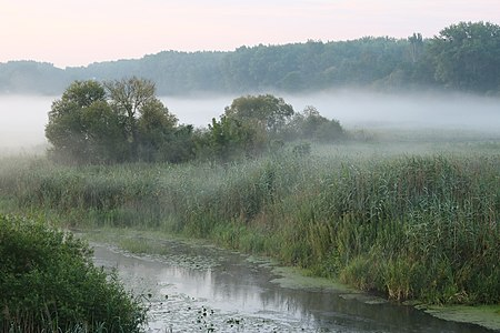 Desna river, feeder of the Southern Bug, at meadow