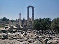Didyma, Turkey, Temple of Apollon Two Pillars.jpg