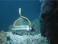 Digital acoustic recording system at hydrothermal vent.png