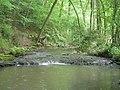 Dowles Brook - geograph.org.uk - 816695.jpg