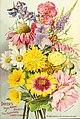 Dreer's garden 1902 calendar (1902) (14577356869).jpg