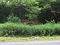 Drinking fountain becoming overgrown - geograph.org.uk - 1353379.jpg
