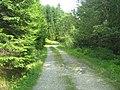Drumul pitoresc pe Valea Pietrii - panoramio.jpg