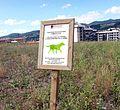 Durango - sign.jpg