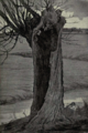 Dutch Painting in the 19th Century - Van der Valk - A Willow Tree.png