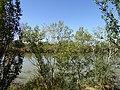 Ebro River in Osera de Ebro 01.jpg