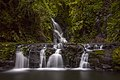 Elebana Falls, Lamington National Park.jpg