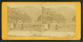 Elephant's Head, Crawford Notch, N.H, from Robert N. Dennis collection of stereoscopic views.png