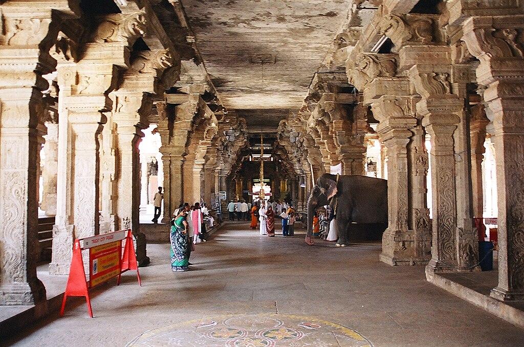 Px Elephant Among The Pillars Of Srirangam Temple C Tiruchirapalli