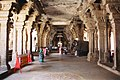 Elephant among the pillars of Srirangam temple, Tiruchirapalli.jpg
