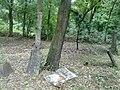 Elhagyott temető - Abandoned Cemetery - panoramio.jpg