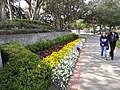 Entrance to University of Southern California - Los Angeles, CA - USA (6933945915).jpg