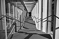 Escalier Stairway (191104781).jpeg