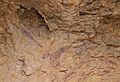 Escena de caça de senglars, cavitat V de la cova Remígia.JPG