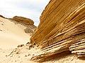 Esculturas de Areia.jpg