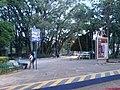 Estaçoes de Bondes no Parque Taquaral - panoramio (3).jpg