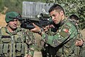 Exercise TRIDENT JUNCTURE (22405491515).jpg