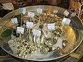Exotic seafood in 'Mui Ne' restaurants..JPG