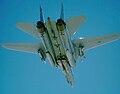 F-14A VF-33 DSCAP.JPEG